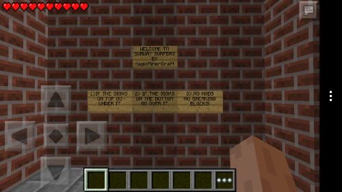 Minecraft-Subway-Surfers-1