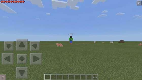 selfi-v-minecraft-3