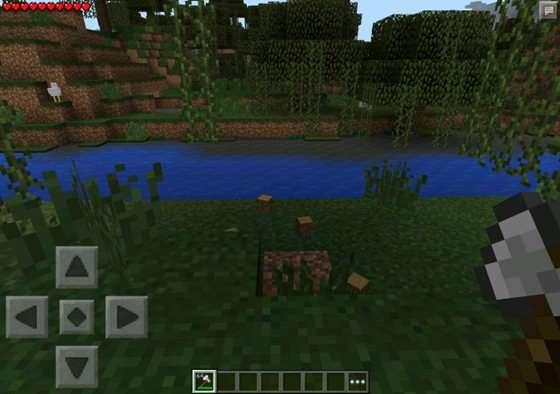 mod-Tree Capitate-2