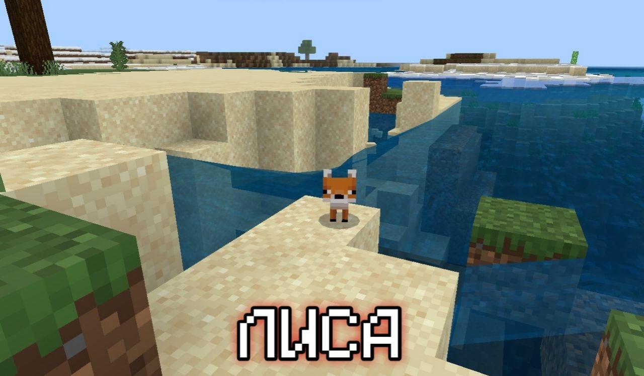 Лисы в Minecraft Pocket Edition 1.13.0.1