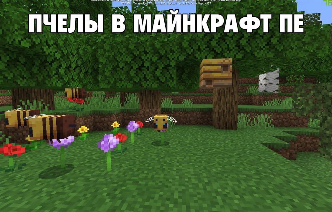 Пчелы в Майнкрафт ПЕ 1.14.0.50