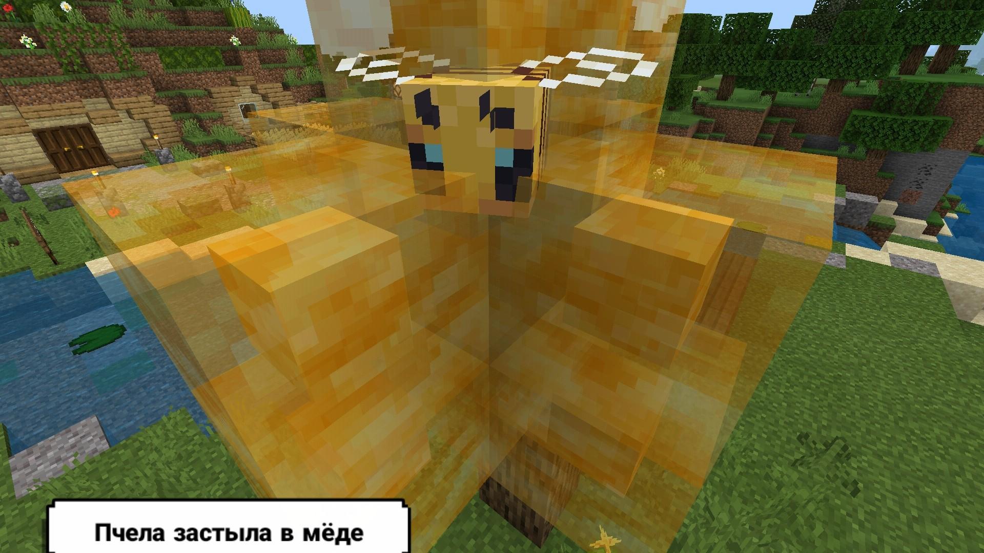 Photo-7-Minecraft-1-14