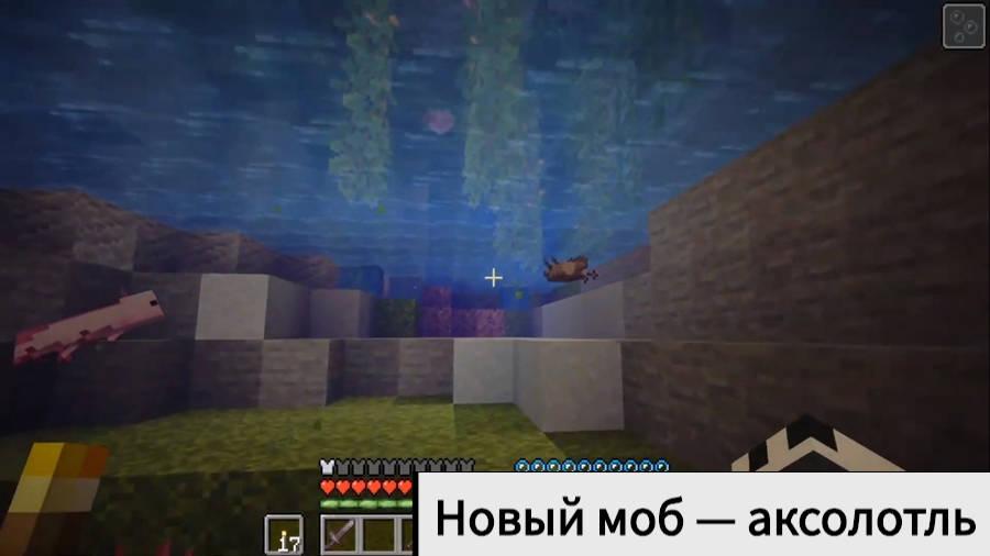 Аксолотли Minecraft Java 1.17