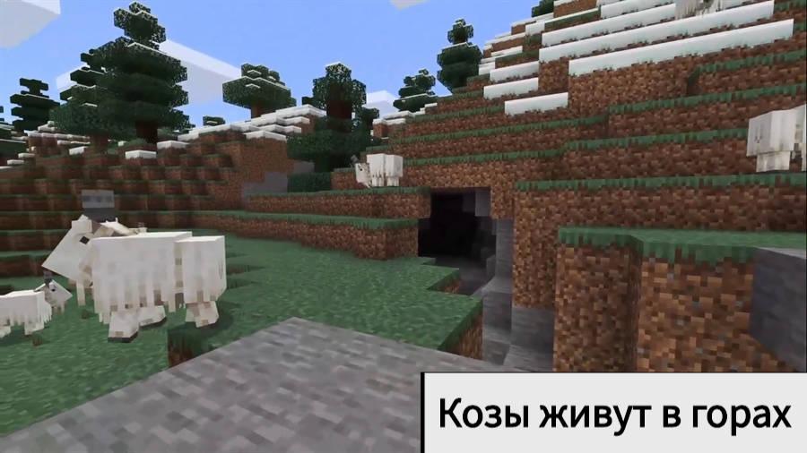 Козы Minecraft Java 1.17