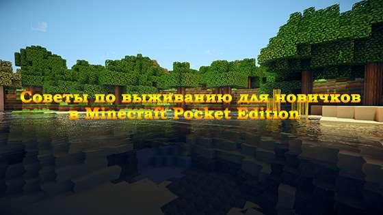 sowety-novichkam-minecraft-pe-logo