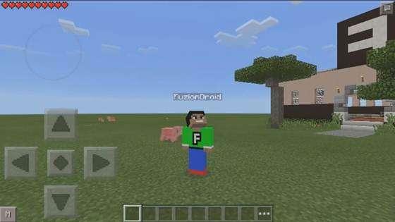 selfi-v-minecraft-1