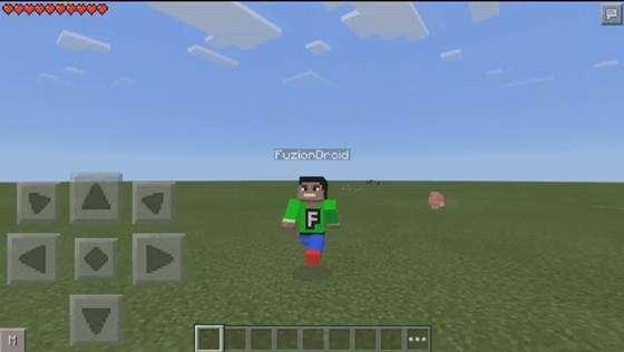 selfi-v-minecraft-2