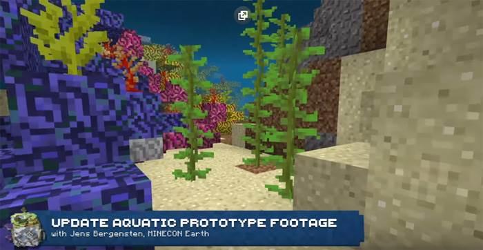 водоросли в майнкрафт Update Aquatic