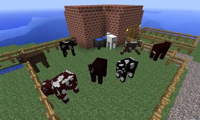 идеи для развития Minecraft