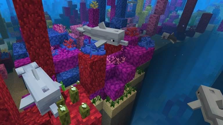 Дельфины в Водном обновлении Майнкрафт 1.4