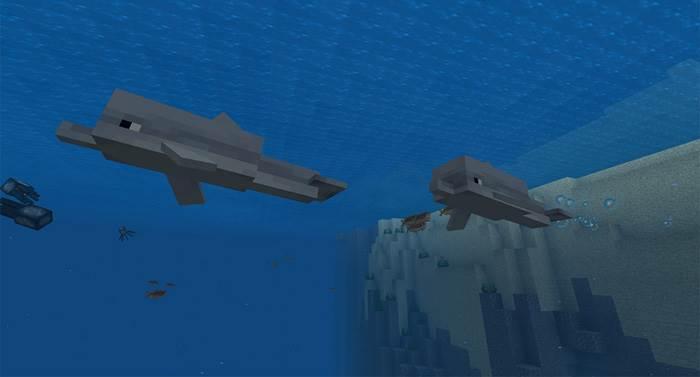 Новые дельфины в Minecraft Bedrock