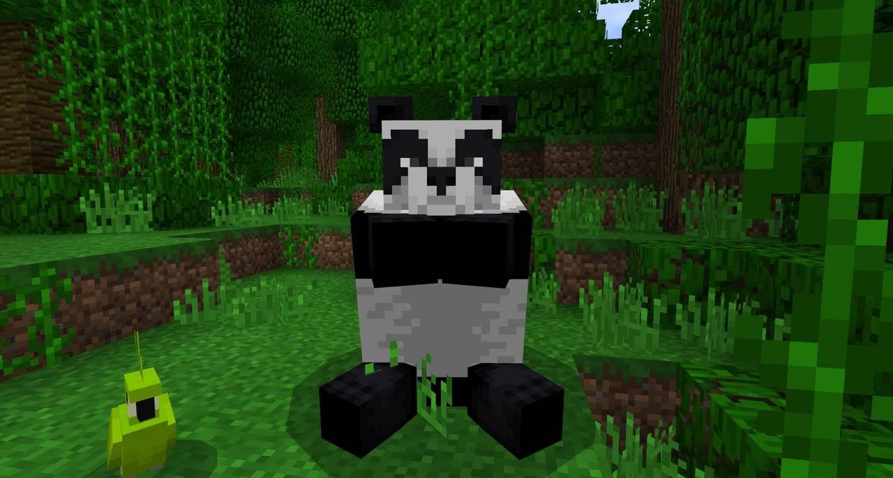 Обычная Панда