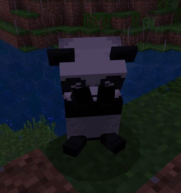 панда плачет