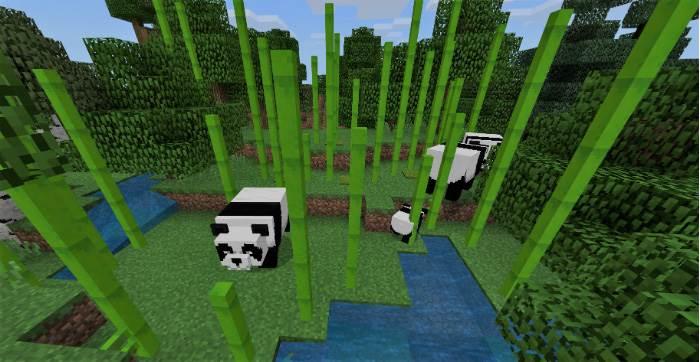 Панды в Майнкрафт ПЕ